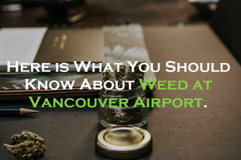 Weed at Vancouver Airport
