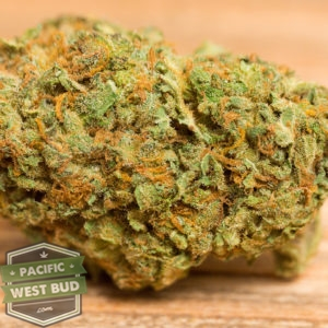 Buy Blue Dream Cannabis, Sativa Dominant Hybrid Online Canada